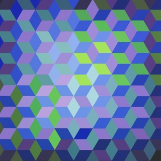 Victor Vasarely | New Acquisition II